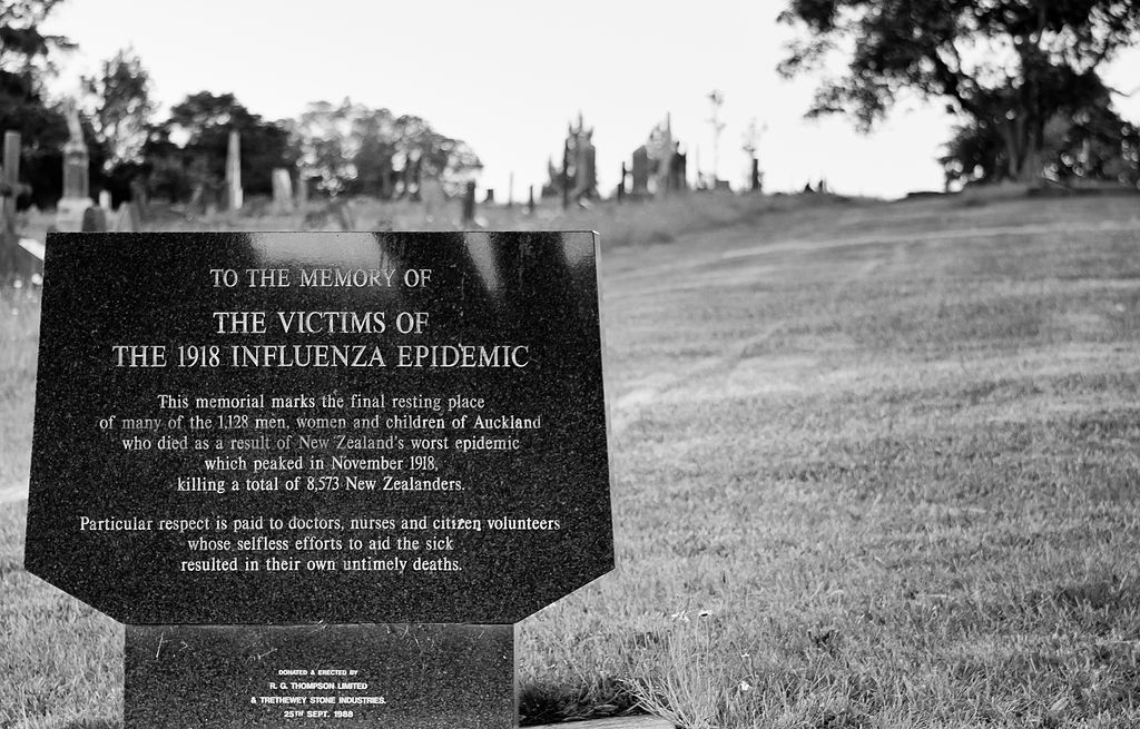 Remembering the World War I soldiers who succumbed to the 1918 flu pandemic
