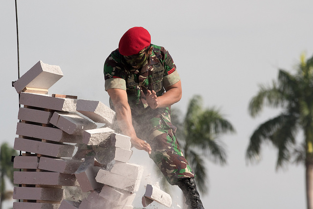 25997093608 d3ddcd1158 z - (PHOTOS) Mattis gets live snake send-off with fire and brick-smashing in Indonesia