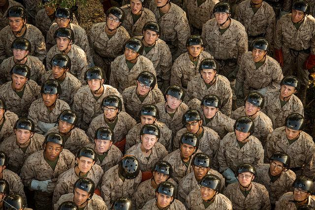 37869980112 1739ba015c z - The US Marine Corps celebrates 242 years of defending freedom