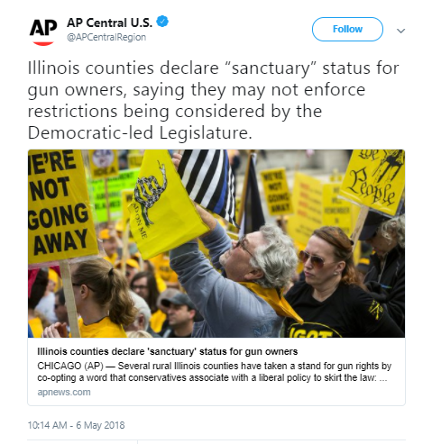 IL counties declare themselves 'sanctuary' counties for gun owners