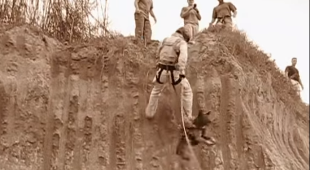 Navy SEAL Demonstrates Live-Fire Rappel Exercise With K9 Featured