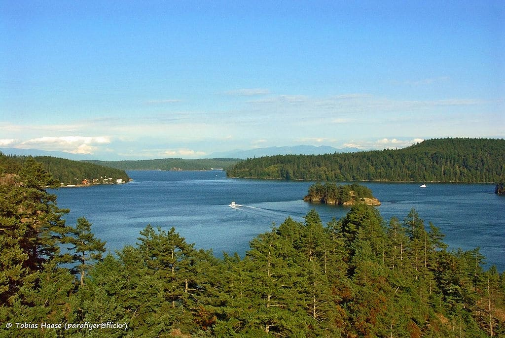 Navy proposes special operations training in WA State Parks