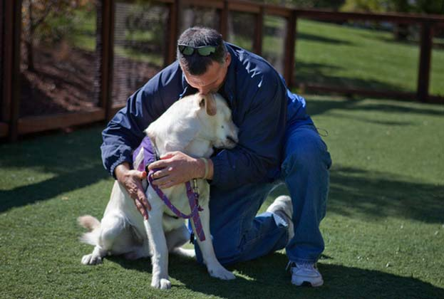Dogs Play Central Role In Helping Vets With PTSD Cope Featured