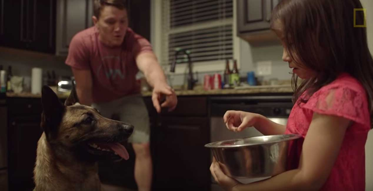 (WATCH) Soldier Adopts Dog That Saved His Life Featured