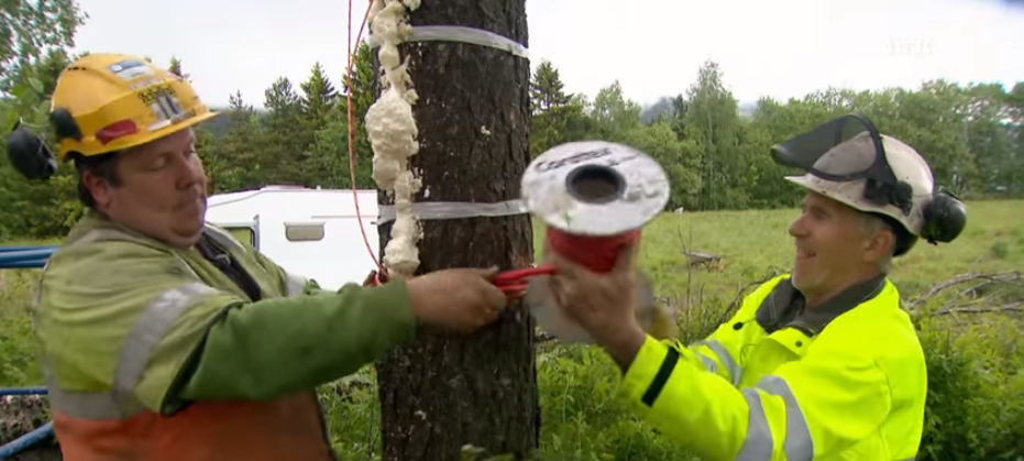 (WATCH) The Best Way To Chop Wood This Winter? Explosives! Featured