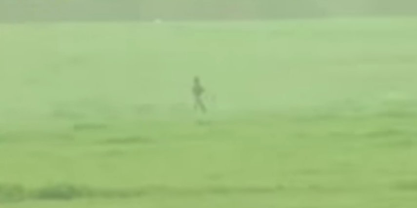ISIS Fighter Gets Hunted Down By Kurdish Peshmerga Forces In Open Field With No Cover Featured