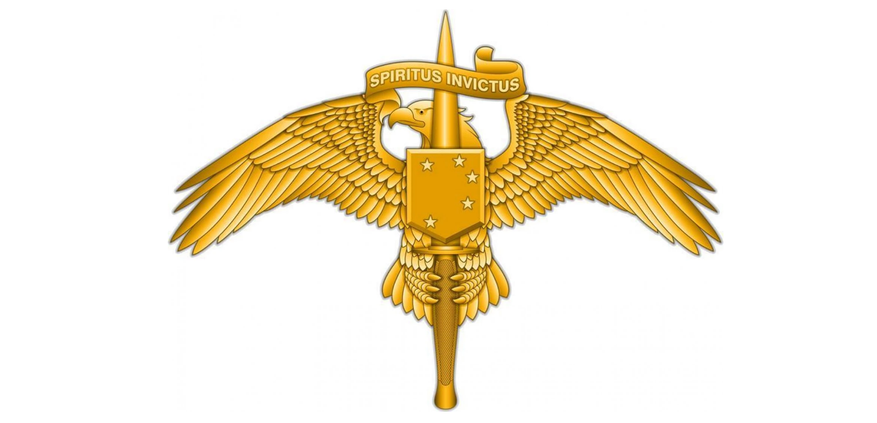 Marine Corps Gets Its Own Raider Insignia American