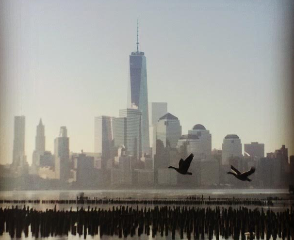 Op-ed: Reflecting On The Meaning Of Freedom In A Post 9/11 World Featured