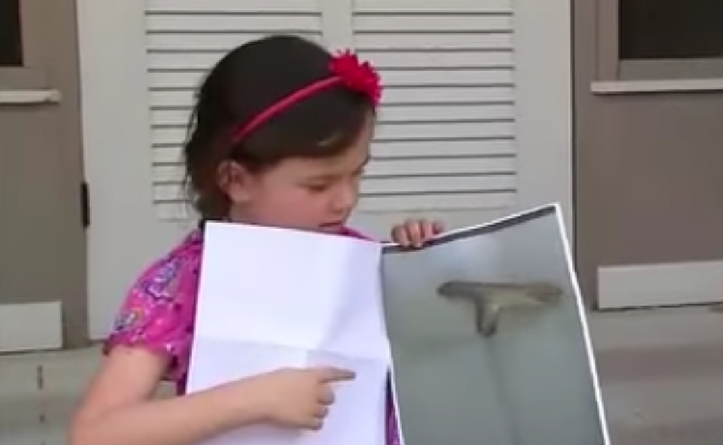 "5-Year-Old Suspended For Making ""Shooting Motion"" With Gun-Shaped Stick Featured"