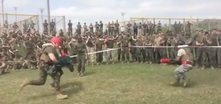 Screen Shot 2017 04 17 at 5.49.07 PM - (VIDEO) Watch Marines battle Airmen with Pugil sticks