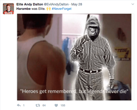 Screen Shot 2017 06 02 at 11.13.17 AM - Here Is How The Internet Remembered Harambe The Gorilla One Year After His Death
