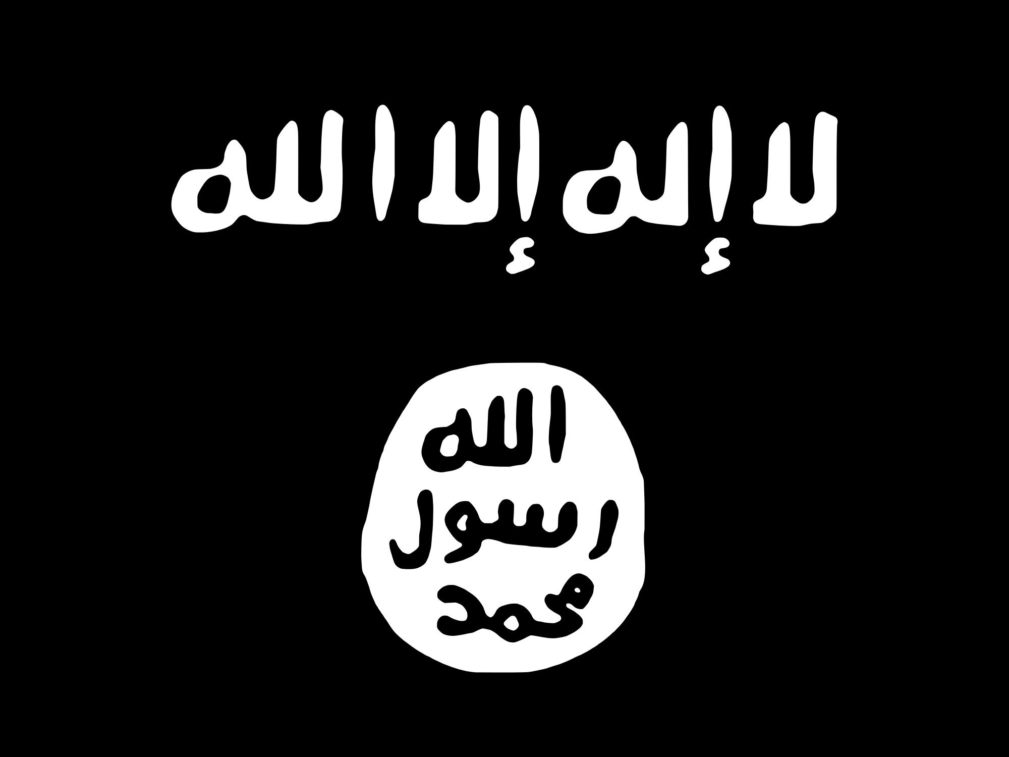 islamic state wilayat sinai flag