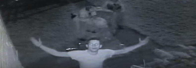 U.S. Army Paratrooper Veteran Destroys A Robber On Veteran's Day Featured