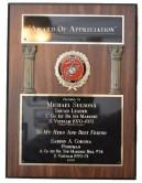 "Award of Appreciation Presented to Michael Sulsona, Squad Leader, ""C"" Co 1st Bn 1st Marines, S Vietnam 1970-1971 To My Hero And Best Friend, Savino A Corona, Pointman, A Co 1st Bn 5th Marines, Hill #34, S Vietnam 1970-1971 1999"