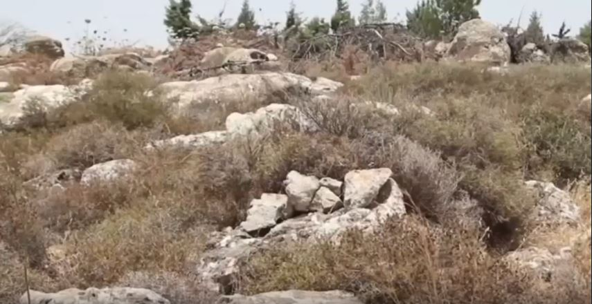 Israel Defense Force Shows Off Their Camouflage Skills In This Incredible Field Exercise Featured